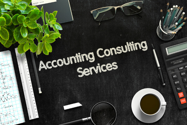 Accounting and Consulting Services