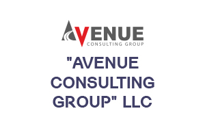 AVENUE CONSULTING GROUP LLC